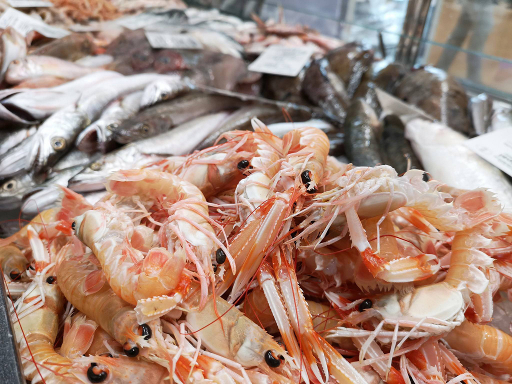 Gastro-ribarnice-brac-svjeza-riba-6