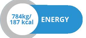 energija_EN