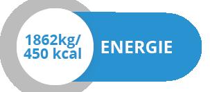 energija_GER
